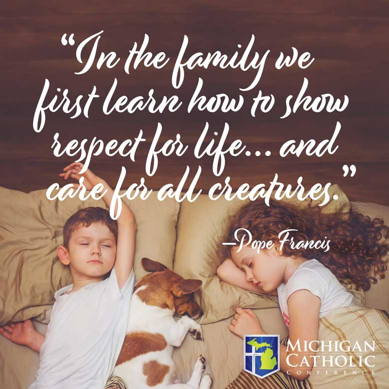 In the family we first learn how to show respect for life… and care for all creatures. —Pope Francis