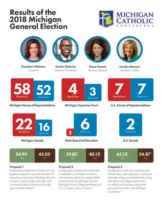 Results of the 2018 Michigan General Election document thumbnail