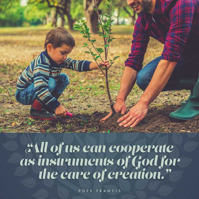 All of us can cooperate as instruments of God for the care of creation. —Pope Francis