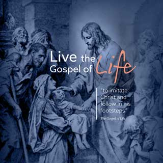 Live the Gospel of Life to imitate Christ and follow in his footsteps